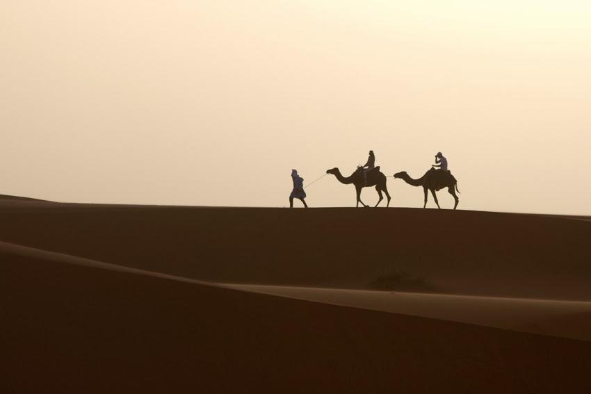 Saharan Classic