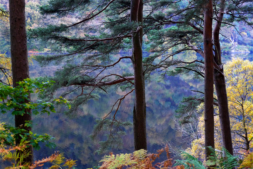 Glendalough revisited... I was there last week and now only in my mind's eye. Sometimes it reminds me of a Chinese landscape painting.