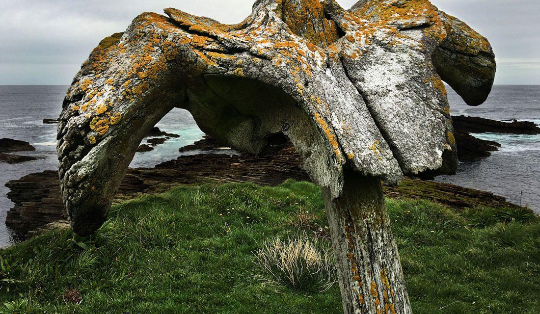 Birsay whalebone, Mainland, Orkney, Scotland