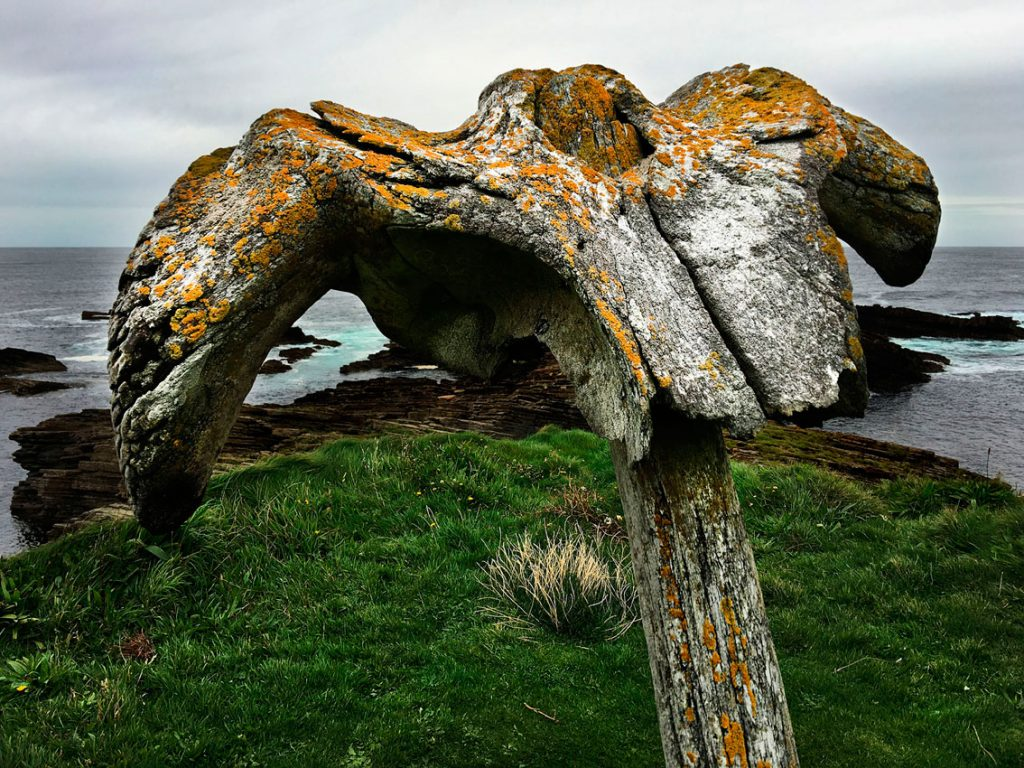Birsay whalebone, Mainland, Orkney, Scotland, Summer Salon, Arti et Amicitiae